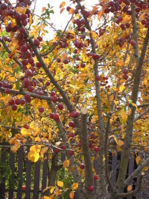 October_2007_064
